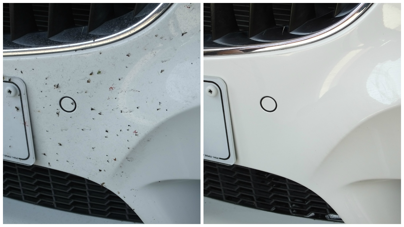 active-insect-remover-before-and-after