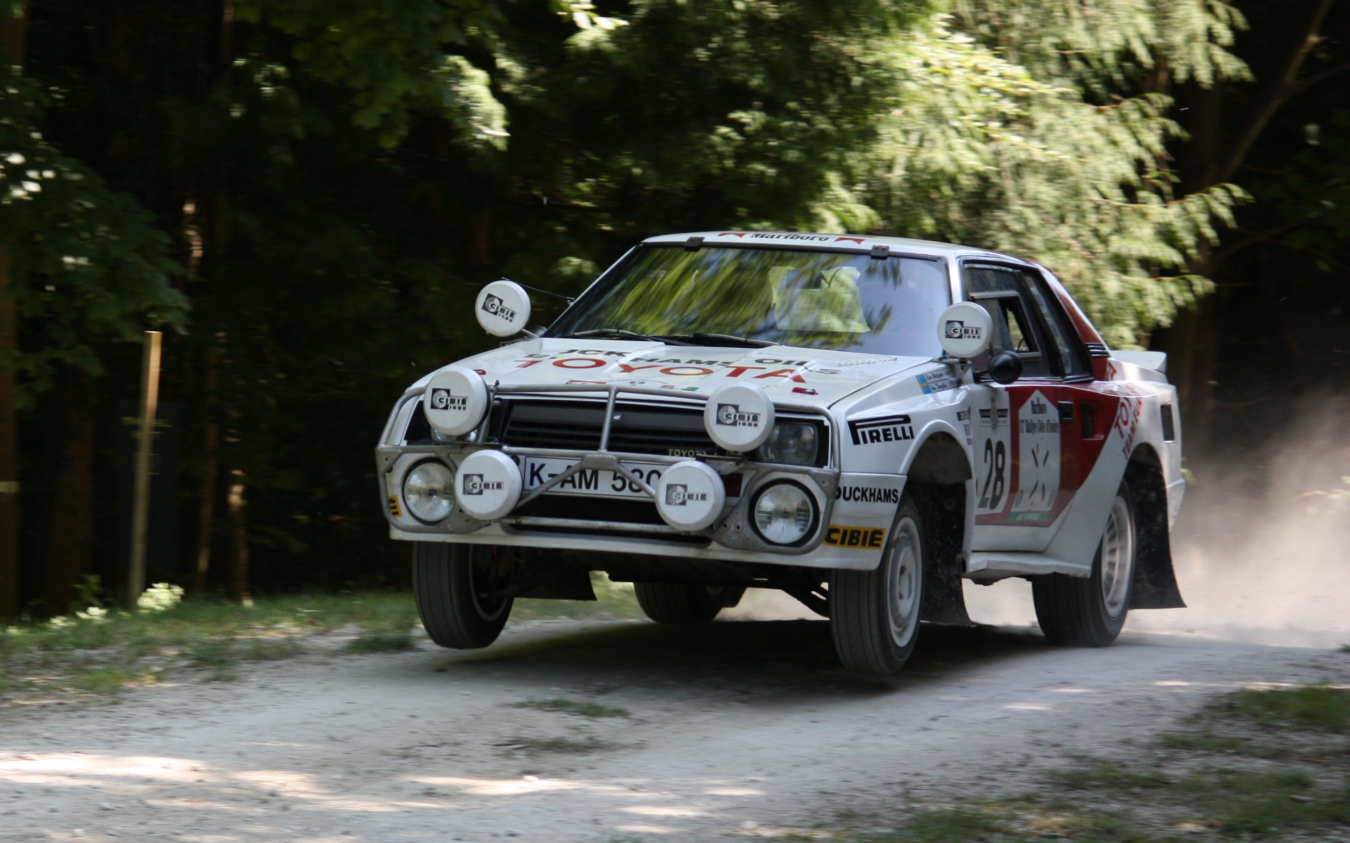 The Celica triumphed in every one of the six African rallies it entered